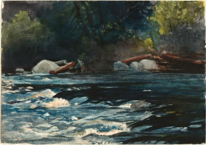 Winslow_Homer_-_The_Rapids,_Hudson_River,_Adirondacks